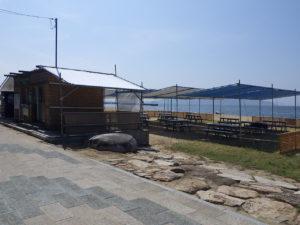 デイキャンプ場(全景)